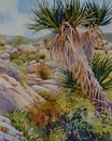 "Desert Sketch #8, Yucca and Mallow: watercolor, 11""x14"""