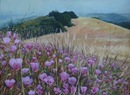 "Edgewood Late Spring: Clarkia Abundance, oil on canvas, 18""x24"""