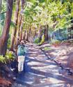 Gwyn in the Redwoods: Watercolor, 11x15""